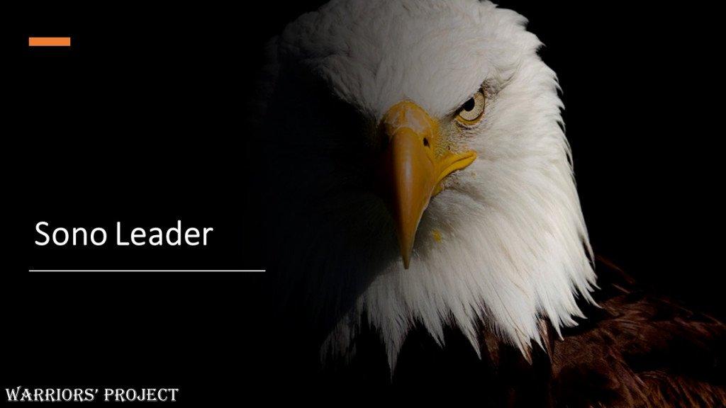 La storia dell aquila che si credeva un pollo - corsi formazione online leadership comunicazione atteggiamento personalità vincenti successo strategie